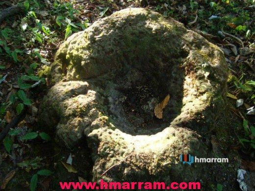 This Lungsum (stone mortar) at Senvon village in Hmar Hills is one of the many interesting remains pointing to the Hmar tribe's legends. Located at Zopui mountain, it remains unprotected both from weather and human activities.